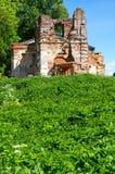 Ruinas de la iglesia en la fortaleza de Koporye Imagen de archivo