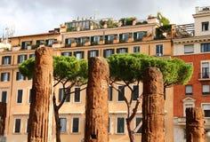 Ruinas de los sacros del área, Roma Foto de archivo