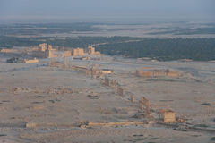 Ruinas de Palmira foto de archivo libre de regalías