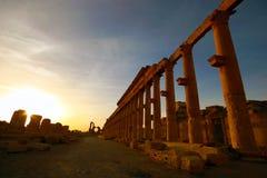 Ruinas de Pamyra en la salida del sol Fotos de archivo