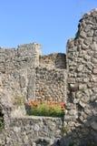 Ruinas de Pompeya y de amapolas rojas imágenes de archivo libres de regalías