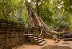 Ruinas de TA Phrom Fotografía de archivo libre de regalías