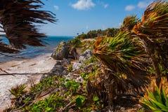 Ruinas de Tulum, México que pasa por alto el mar del Caribe en la Riviera Maya Aerial View Playa Quintana Roo México - tiro de Tu foto de archivo libre de regalías