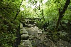 Ruinas de un molino viejo en el parque natural imagen de archivo