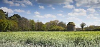 Ruinas de un molino de viento viejo en StBrieuc, Francia Fotografía de archivo libre de regalías