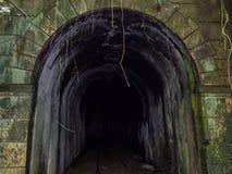 Ruinas de un túnel del tren Fotografía de archivo libre de regalías