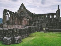 Ruinas de una abadía Foto de archivo libre de regalías