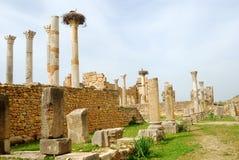 Ruinas del capitolio, Volubilis, Marruecos Imagenes de archivo