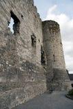 Ruinas del castillo de Carlow Fotografía de archivo