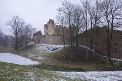 Ruinas del castillo de Dobele en invierno Fotos de archivo libres de regalías