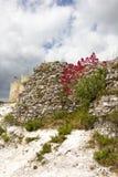 Ruinas del castillo de Gaillard foto de archivo