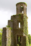 Ruinas del castillo de la lisonja Imagen de archivo libre de regalías