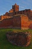 Ruinas del castillo de Ordensburg Fotografía de archivo