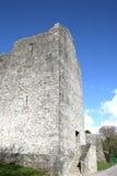 Ruinas del castillo de Ross, killarney, Irlanda Foto de archivo libre de regalías