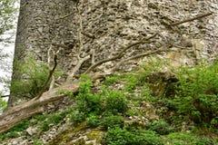 Ruinas del castillo de Vinné fotografía de archivo libre de regalías