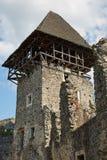 Ruinas del castl de Nevitsky Imagen de archivo