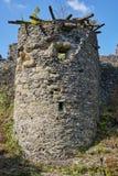 Ruinas del castl de Nevitsky Fotografía de archivo libre de regalías