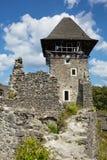 Ruinas del castl de Nevitsky Fotos de archivo