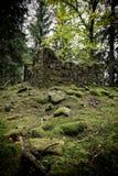 Ruinas del chapelle ocultado en el bosque foto de archivo