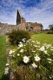 Ruinas del convento de monjas de Iona fotografía de archivo libre de regalías