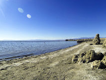 Ruinas del lago sea de Salton Foto de archivo libre de regalías