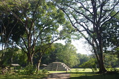 Ruinas del maya de Copan Imágenes de archivo libres de regalías
