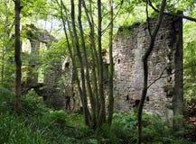 Ruinas del molino de los staups en quebrada del agujero del revoltijo en arbolado Imagen de archivo libre de regalías