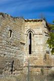 Ruinas del monasterio de Bonaval Fotografía de archivo