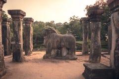 Ruinas del paisaje del viaje de Sri Lanka de Poḷseñal Sri Lanka de la UNESCO de la ciudad antigua del onnaruwa fotos de archivo