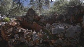 Ruinas del pozo antiguo en bosque almacen de metraje de vídeo