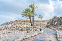 Ruinas del teléfono Megiddo Imágenes de archivo libres de regalías
