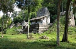 Ruinas del templo en el parque nacional de Tikal, Guatemala Foto de archivo