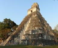 Ruinas del templo en el parque nacional de Tikal, Guatemala, en el amanecer Imágenes de archivo libres de regalías