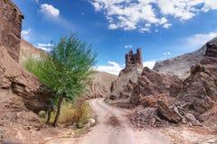 Ruinas en el monasterio de Basgo, Leh, Ladakh, la India Imagen de archivo