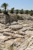Ruinas en el teléfono Megiddo, Israel Fotografía de archivo