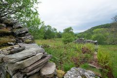 Ruinas en Glenan, Portavadie Imágenes de archivo libres de regalías