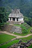 Ruinas en Palenque Foto de archivo libre de regalías