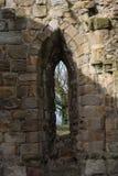 Ruinas históricas de la abadía de Basingwerk en pradera, cerca de Holywell País de Gales del norte Imagen de archivo libre de regalías