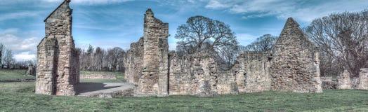 Ruinas históricas de la abadía de Basingwerk en pradera, cerca de Holywell País de Gales del norte Fotos de archivo libres de regalías