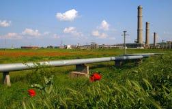 Ruinas industriales, tubos y campo de flores Imagenes de archivo
