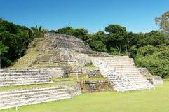 Ruinas mayas Belice, México Fotografía de archivo