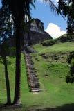 Ruinas mayas con la trayectoria Imagen de archivo