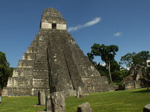 Ruinas mayas de Tikal Foto de archivo libre de regalías