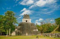 Ruinas mayas de Tikal en Guatemala Imagen de archivo
