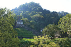 Ruinas mayas en Palenque, Chiapas, México fotografía de archivo