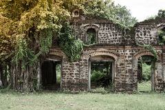 Ruinas que construyen con los árboles Fotos de archivo