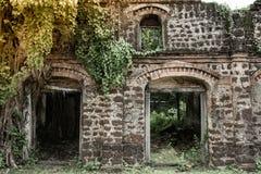 Ruinas que construyen con los árboles Imagenes de archivo