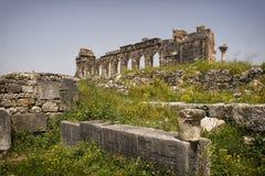 Ruinas romanas de Volubilis. Foto de archivo