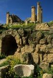 Ruinas romanas en Jerash Foto de archivo libre de regalías
