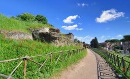 Ruinas romanas y amapolas a lo largo de un camino en la colina de Palatine en Roma, Italia Foto de archivo